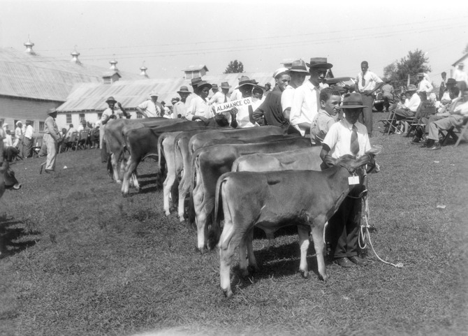 Negro Junior Dairy Show in Greensboro